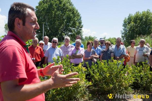 Δράση Εταιρικής Κοινωνικής Ευθύνης: Κάτοικοι του Δήμου Αριστοτέλη στα Φυτώρια Κωνσταντινίδη