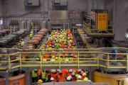 Ιούλιος 2014: Φοιτητές στο εργοστάσιο εμπλουτισμού Ολυμπιάδας